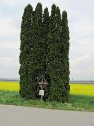 Eder-Kreuz